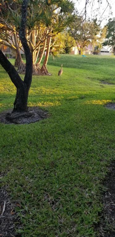 1111 Duncan Circle 101, Palm Beach Gardens, FL, 33418